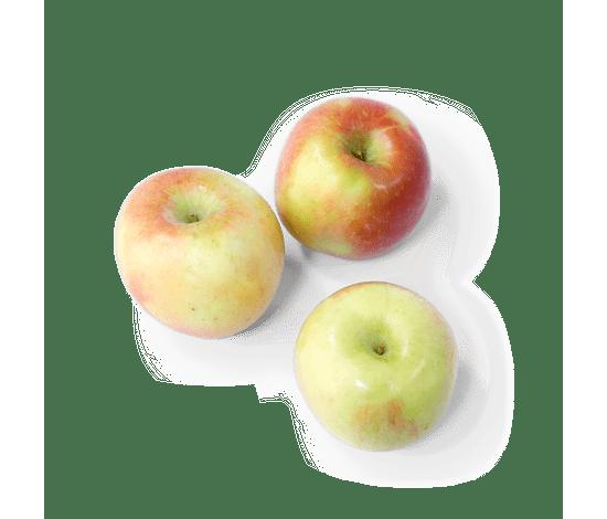 28-poma-fuji-extra