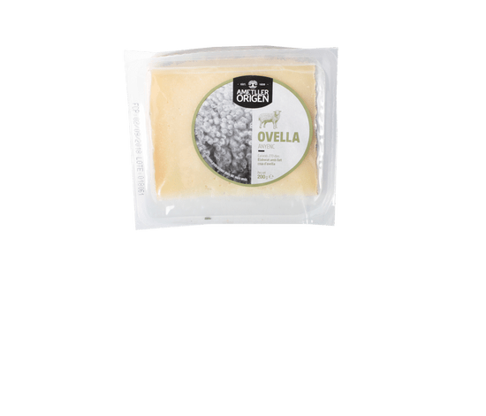 41851-formatge-d-ovella-anyenc-ao-200g