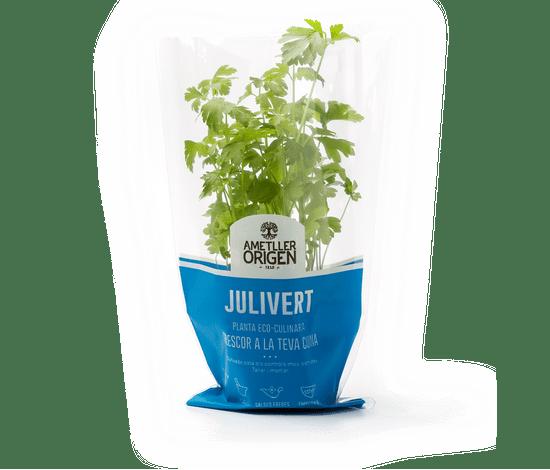 475-planta-julivert