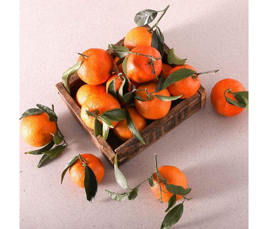 Mandarina-fulla-extra-w